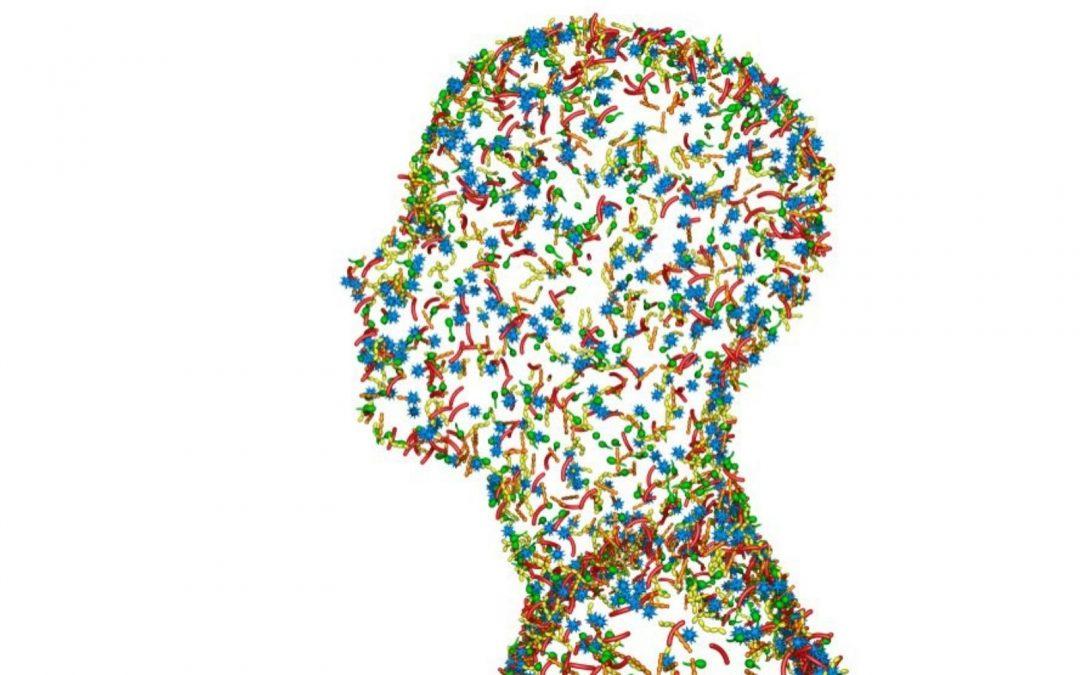 Das Hautmikrobiom, der Schutzschild der Haut