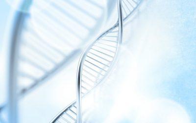 DNA Repair & Schutz